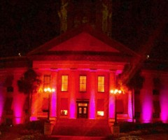 Florida Makes History as State Capital Goes Pink for First Time During  October's Breast Cancer Awareness Month